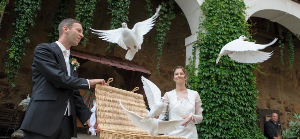 Hochzeit Anna & Erik (Gnandstein_2015-01)